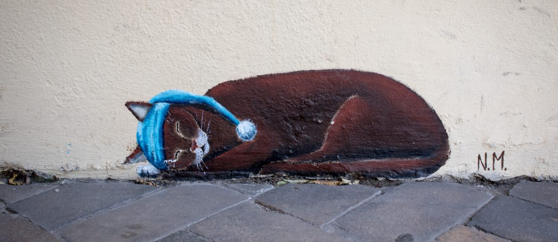 Die Katzen der Norderstraße